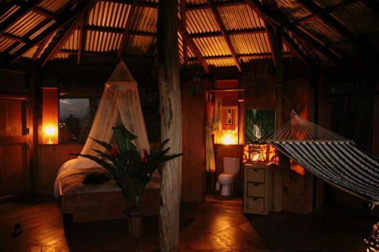 Manicou River: Treehouse at night