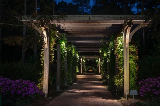 Attrayant Cape Fear Botanical Garden: Botanical Gardens Entrance At Night
