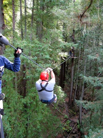 Sonoma Canopy Tours: on to the next!