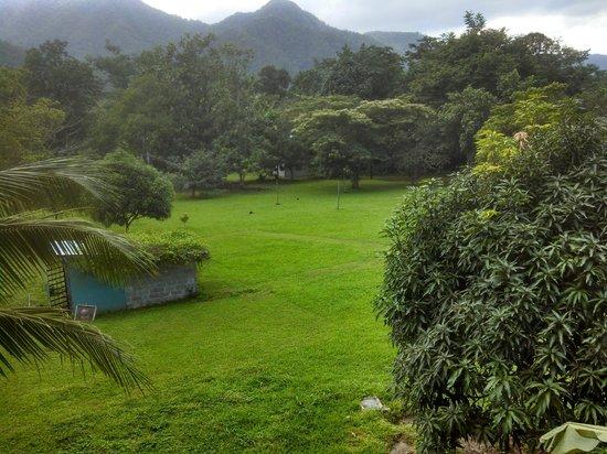 Hummingbird Guest Lodge & Hostel: Beautiful setting