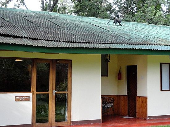 Mount Meru Game Lodge & Sanctuary: the 1959 building with room nr 22