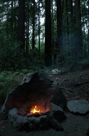 Glen Oaks Big Sur : Forest View Fire Pit