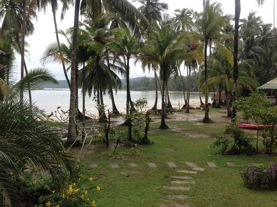 Koh Kood Ngam Kho Resort: View from the room