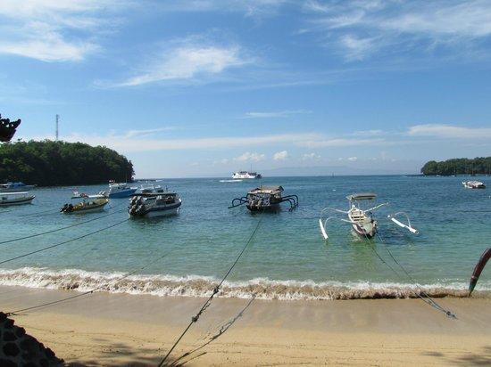 Absolute Scuba Bali: вид на море