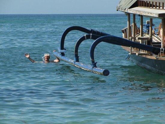 Absolute Scuba Bali: утренний заплыв