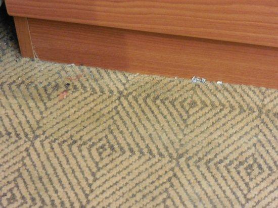 Microtel Inn & Suites by Wyndham Springville: dirty carpet