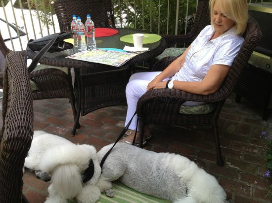 Carmel Country Inn: Mom with the dogs on the community patio
