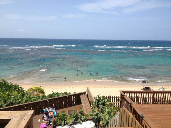 Villa Tropical Oceanfront Apartments on Shacks Beach: View from TR at the main building.