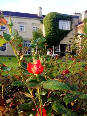 Gregans Castle Hotel: Rose garden