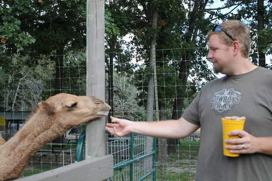 Promised Land ZOO: My husband and his favorite animal of the day