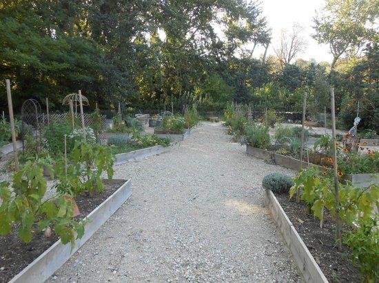 Manoir de la Roseraie : le jardin potager du parc