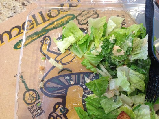 Mellow Mushroom: Worm in the salad
