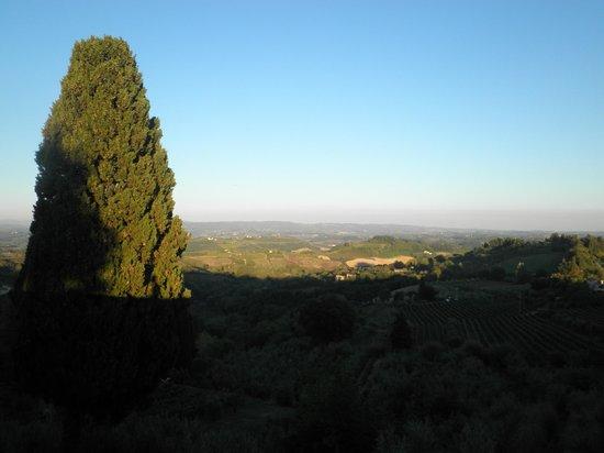 Il Colto : View