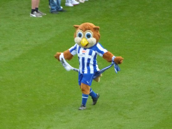 Hillsborough Stadium: Up the Owls!!!
