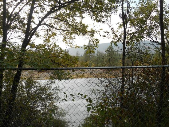 Mountain Man RV Park: Glimpse of the river