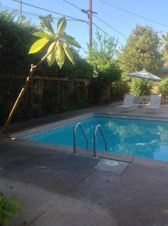 El Mirasol Villas: back pool