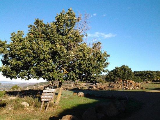 Antichi Ovili: inizio dei sentieri dall`agriturismo verso valle