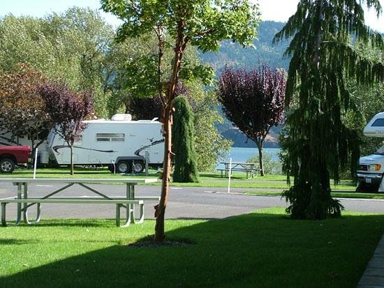 Bridge RV Park & Campground: Lawn & Trees at each site