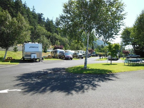 Bridge RV Park & Campground: Back-In Sites all Full Hookup