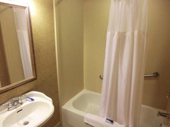 BEST WESTERN PLUS St. Christopher Hotel: Badewanne und Dusche