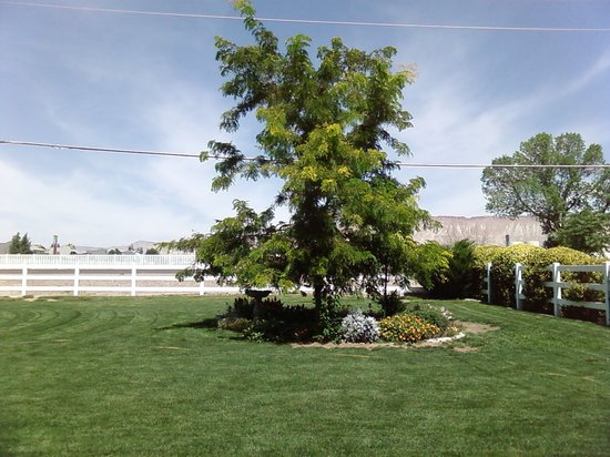 Grand Junction Bed and Breakfast : Come See how it's grown!!