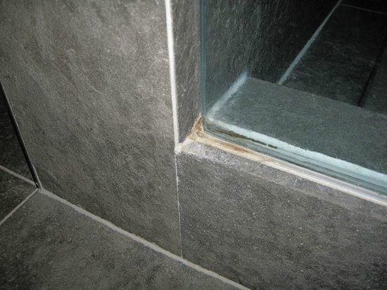 SLS Hotel, A Luxury Collection Hotel, Beverly Hills: some more mold in the bathroom