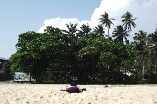 Comaran Beach Hotel: Пляж, за деревьями шоссе