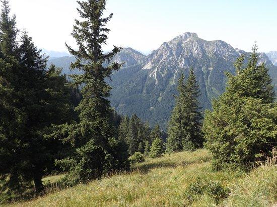 Landhotel Guglhupf: Mountain views
