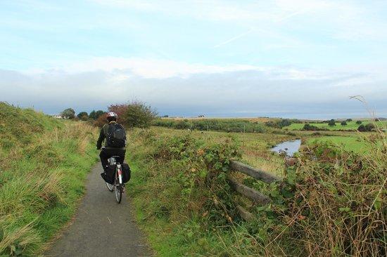 Bushmills Cycle Hire: lush