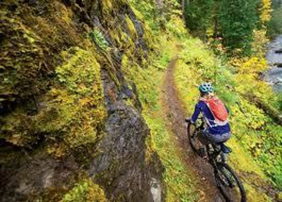 Umpqua's Last Resort, Wilderness RV Park & Campground: North Umpqua Trail - Mountain Biking the Umpqua National Forest