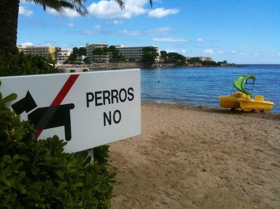 Caribe Ibiza Hotel: Es Cana beach