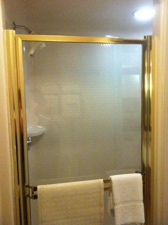 Sleep Inn & Suites: nice shower