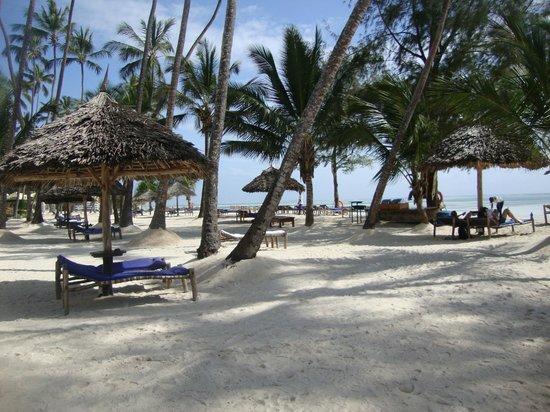 Dream of Zanzibar : Plage