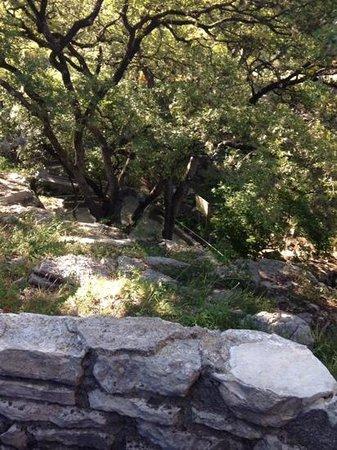 Inn on Barons Creek: view of Barons Ceeek