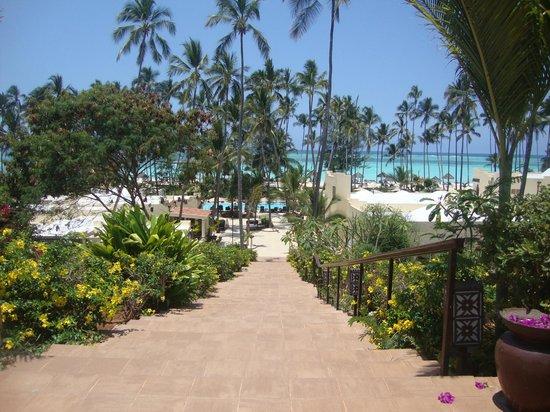 Dream of Zanzibar : Escalier pour accéder à l'espace restaurants, piscine, plage