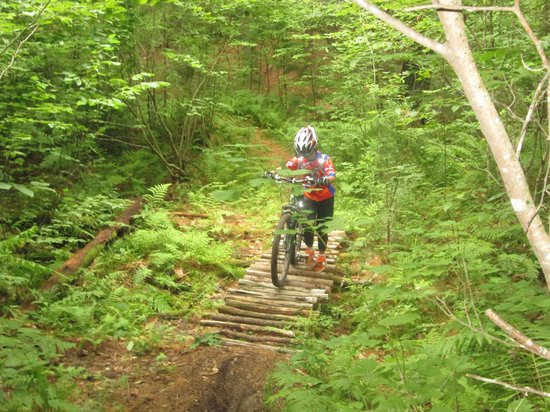 BackCountry Excursions, LLC - Day Tours: Crossinig the bridge