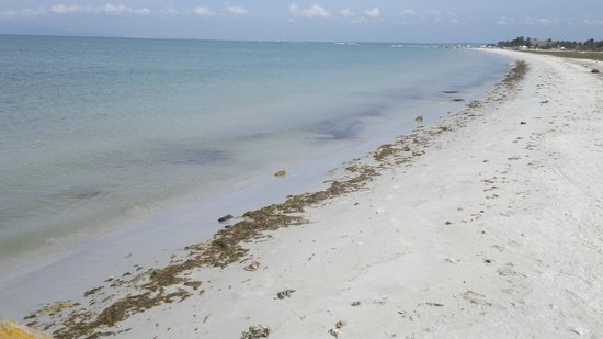 Punta Blanca Hotel: playa isla coche