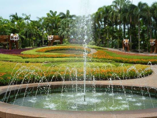 Walkways Through The Palms Picture Of Nong Nooch Tropical Botanical Garden Pattaya Tripadvisor
