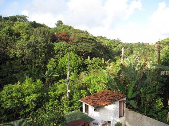 Pousada Vila do Sossego : View from the rooms