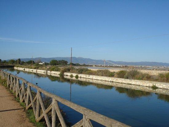 Parco Naturale Molentargius-Saline