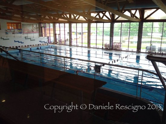 Wet Life : La piscina (per nuoto libero)