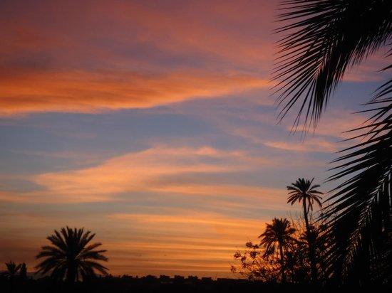 Club Med Marrakech le Riad: vue de la terrasse