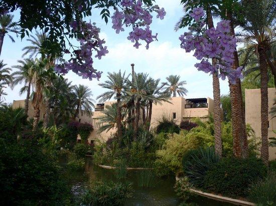 Club Med Marrakech le Riad: jardin du Riad