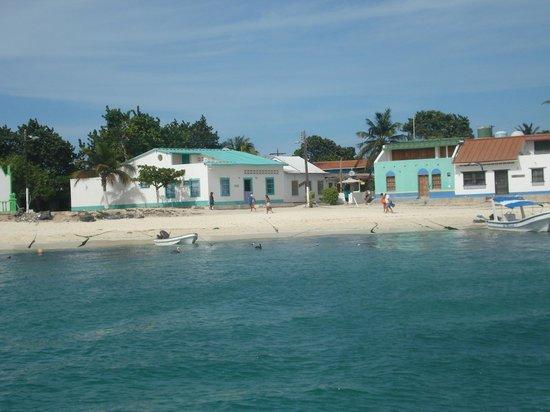 Posada La Terraza: Beach