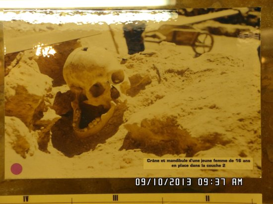Grotte de Rouffignac: Skull of 16 year old girl that dates back 15,000 years Abri Pataud