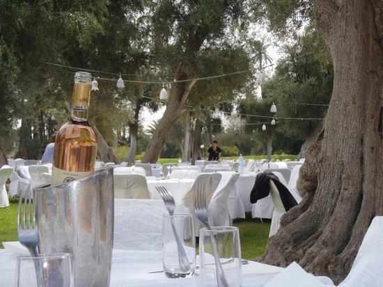 Club Med Marrakech La Palmeraie : dejeuner au jardin