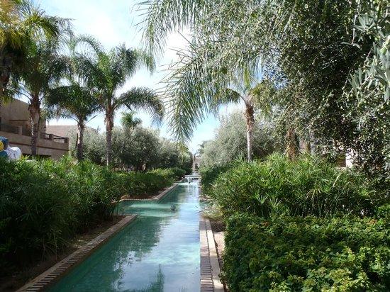 Club Med Marrakech La Palmeraie : plan d'eau
