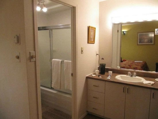 Motel Le Voyageur: zona bagno