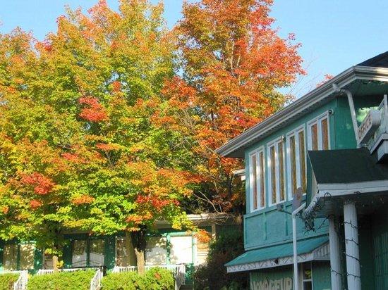 Motel Le Voyageur : una cornice di tanti colori