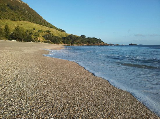 ASURE Harbour View Motel: main beach at Mount Maunganui just 12 - 15 minutes drive